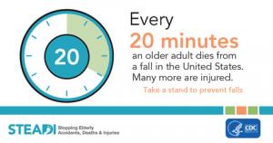 CDC Fall Statistics